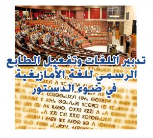 amazigh langue